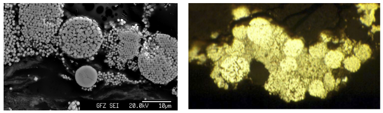 Back-scattered electron mineral images from EPMA and microphotograph, intact and disintegrating grains of framboidal pyrite from clay/lignite horizon at Ruprechtov site